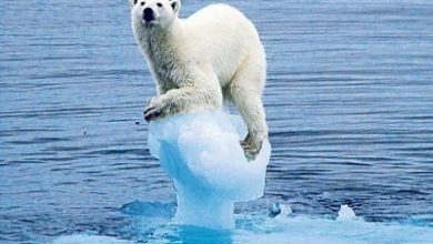 Photo of Cambiamenti climatici, la voce delle Dolomiti alla Conferenza Onu in Perù