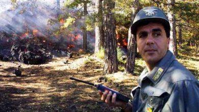 Photo of Aspromonte, arrestato 79enne per incendio boschivo doloso
