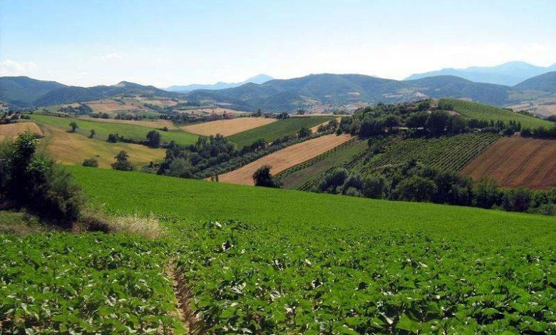 Photo of Giornata internazionale della montagna, focus sull'agricoltura da ieri al domani
