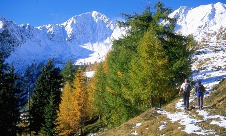 Photo of Parco Orobie Valtellinesi, arrivano 22 nuove guide