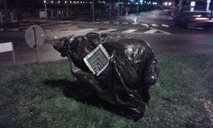 statua daniza