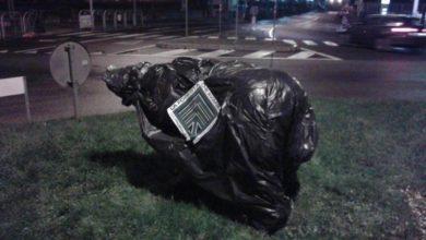 Photo of Nella notte incappucciata la statua dell'Orsa Daniza nel centro di Trento