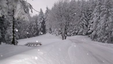 Photo of Con l'arrivo del 2016 arriva la neve in montagna