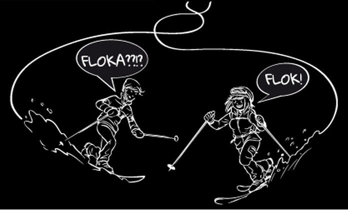 skieda