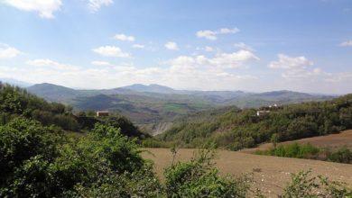 Photo of Master Unimont su Valorizzazione e tutela delle filiere agroalimentari della montagna