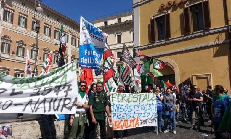 Photo of Anche i Francescani di Assisi contro l'accorpamento della Forestale