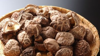 Photo of Lo Shiitakè, il fungo asiatico che dà energia e cura le malattie