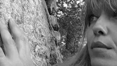 """Photo of """"Segni verdi e segni di pietra"""", incamminiamoci nel racconto di Isabella Corti"""