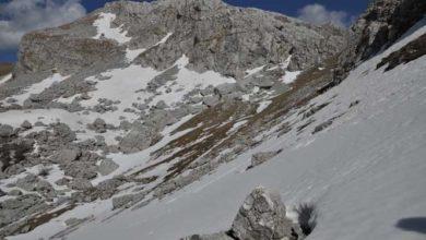 Photo of Monte Cavallo nel cuore delle Mainarde all'interno del Pnalm