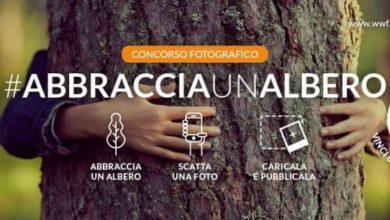 Photo of Abbraccia un albero, invia la tua foto e vinci un viaggio WWF