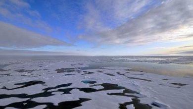 Photo of Il clima trasforma l'Artico in un nuovo oceano