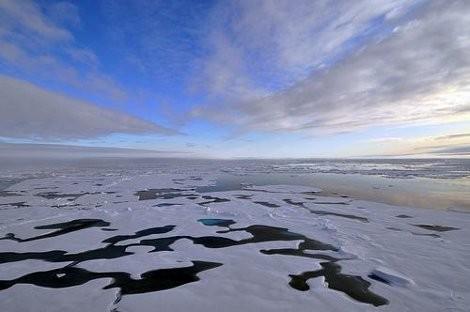 mare artico