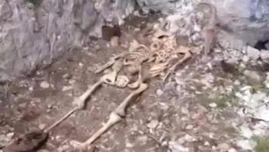 Photo of Sulle Dolomiti dopo 100 anni ritrovato scheletro di soldato della Grande Guerra