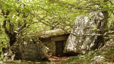 Photo of Charles Moulin: film, area wilderness e una mostra per l'eremita delle Mainarde