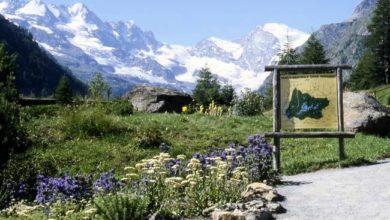 Photo of Parco Gran Paradiso cerca guide e operatori
