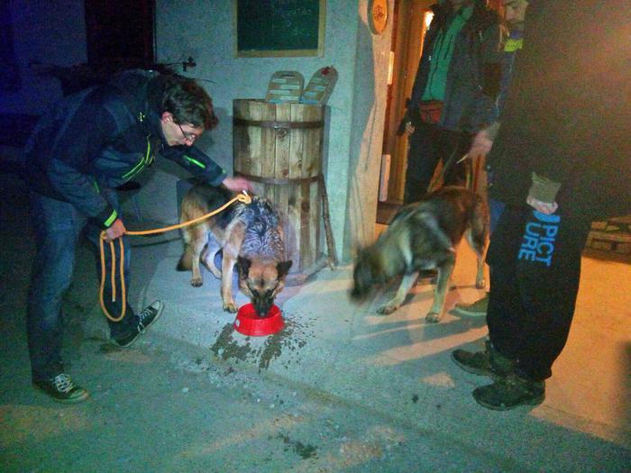 Ritrovato il cane dell'escursionista morto sulla Presolana. I soccorritori del Cnsas con il cane Texas ritrovato.
