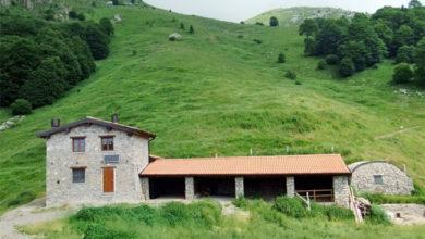 Photo of Vivere e lavorare in alpeggio, in Lombardia canoni agevolati ai giovani