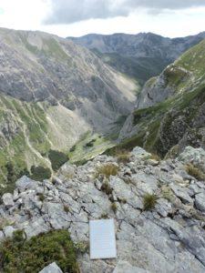 Targa Picco Pio XI