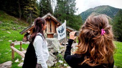 Photo of Oasi WWF aperte (e gratuite) prime domeniche del mese
