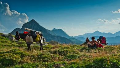 Photo of Trekking con gli asini sulle montagne valdostane