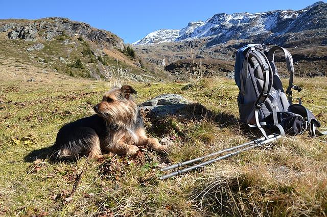 hiking-1129499_640