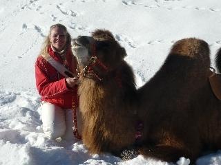 cammello-neve