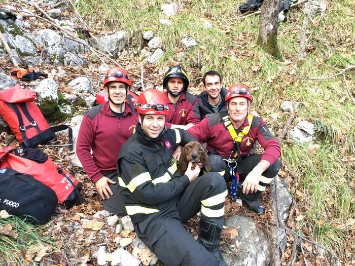 Morino (L'Aquila): cane segugio recuperato dai Vigili del Fuoco in un dirupo sulle montagne della frazione di Grancia