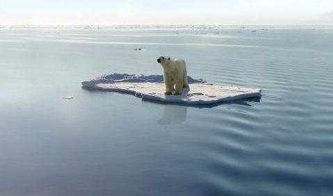 Photo of 2016 anno più caldo della storia, allarme degli ambientalisti