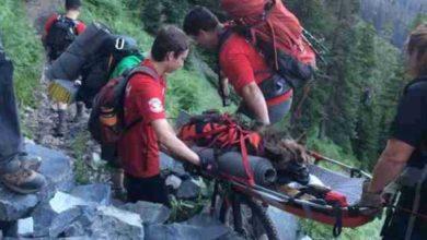 Photo of Pastore tedesco collassa per il caldo in montagna, salvato