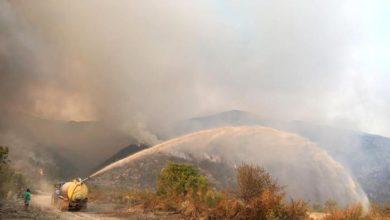 Photo of Arriva la Carta per la lotta agli incendi in Abruzzo