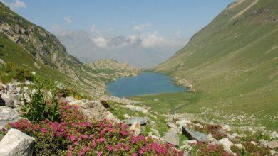 Photo of Italia candida Alpi Marittime a Patrimonio dell'Umanità