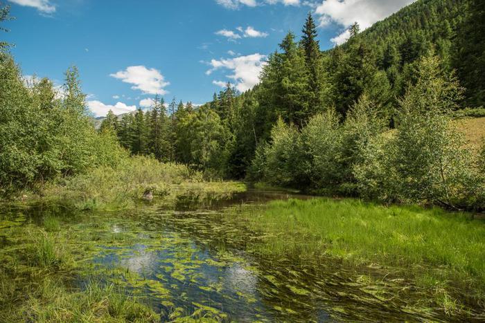 Aosta: il sentiero Les Fontaines a Cogne
