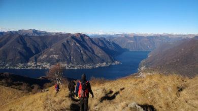 Photo of Chi vi accompagna in montagna? La Lombardia fa chiarezza