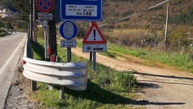 Photo of Lupo trovato morto in Abruzzo. Investito o bracconaggio?