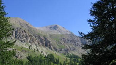 Photo of Sì Unesco a candidatura Alpi Marittime. Niente da fare per la Sila