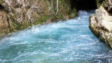 Photo of È la Giornata mondiale dell'Acqua
