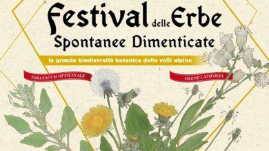 Photo of Il Festival delle erbe spontanee dimenticate