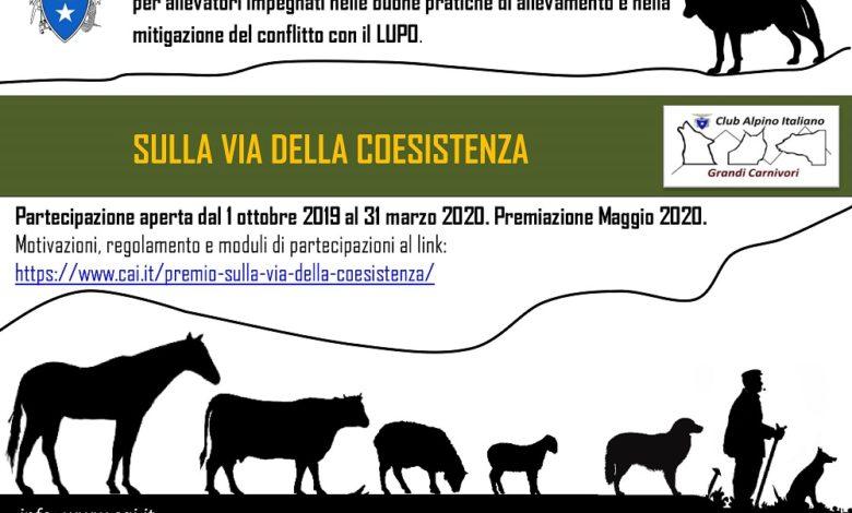Photo of Cai, Premio per allevatori in pace coi lupi
