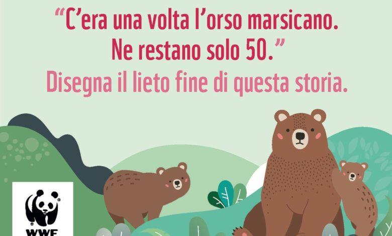 Photo of Contest nelle scuole in difesa dell'orso marsicano