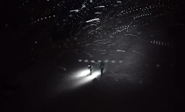 Photo of I Ragni nella bufera del Monte Bianco, l'arte in una foto!