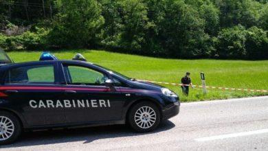 Photo of Moto contro cervo sull'Agordina, muore 51enne veronese