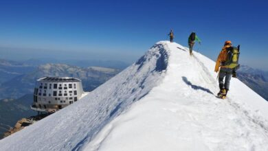 Photo of Monte Bianco, istituita l'Area Protetta su versante francese