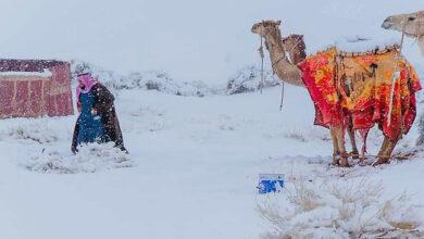 neve deserto sahara