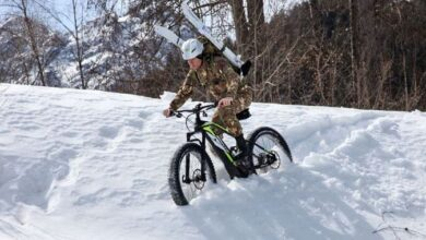 Alpini e-bike