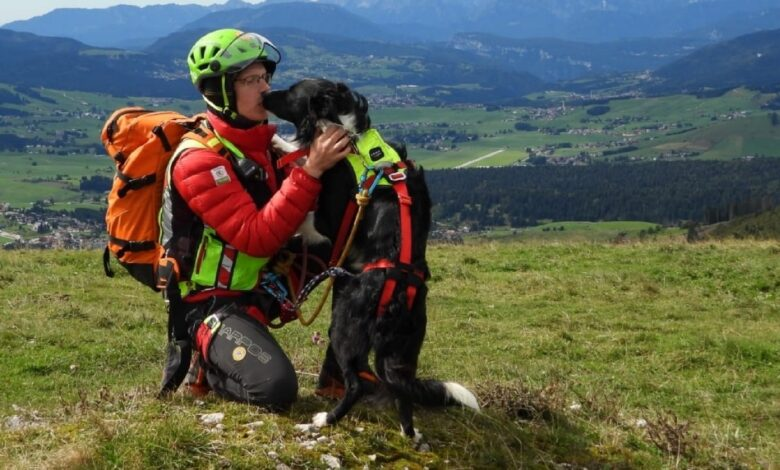Soccorso alpino cani